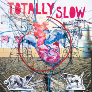 totally_20slow_20lp_20art_original